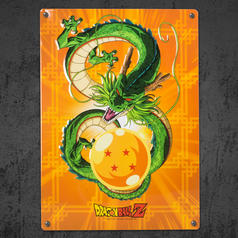 Dragon Ball Z Blechschild